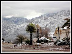 Snow on the mountains!