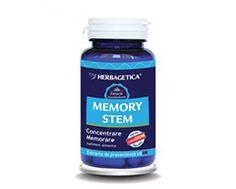 Ginkgo 120 Stem, l'integratore naturale che stimola le funzioni cerebrali e la produzione di cellule staminali.   Integratori