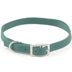 Coastal Pet Products Nylon Single Collar Hunter Green,5/8'' x 14'' Collars and Leashes >>> To view further for this item, visit the image link. (This is an affiliate link and I receive a commission for the sales)