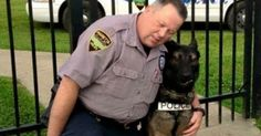 Retired Cop May Get To Keep His Best Friend After All