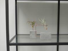 Stijlvolle standaard voor luchtplantjes • vind ze op www.plantra-design.nl