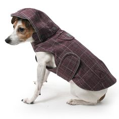 Looking for ideas for Gretel's Seattle winter fleece/raincoat. Dogs would hate the hood - I don't know why its even on there