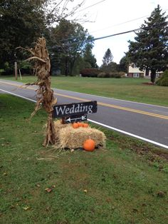 """My roadside Wedding sign for Justine's wedding. It came out great. Old barn boards spray painted black and lettered with Antique White paint. On a 4 x 4 post about 18"""" in the ground. Hay bails, pumpkins and corn stalks complete the Fall theme."""