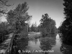 Centre-Val-de-Loire_10 © ScalpL / Art' Photo N&B Série complète sur : www.artphotonb.com Tirage photo noir et blanc argentique sur papier baryté d'un original numérique couleur. #tiragephoto #tiragenoiretblanc #noiretblanc #argentique #tirage #photo #noir #blanc #papierbaryte #fiber #fiberpaper #artphotonb #blackandwhite #bw #bnw #monochrome #photonoiretblanc #photographienoiretblanc #blackandwhitephotography #bnwphotography #argentik #analogue #analogic #analogicphoto #france #centre…