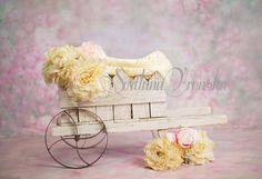 Vintage Wheelbarrow Newborn Digital Backdrop/ prop for newborn