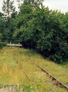 Sobibor Death Camp:  To this day, the buffer still remains at the end of the former ramp.