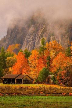 🇺🇸 Pumpkin farm (New Hampshire) by Derek Kind on 🍂 E Fall Pictures, Fall Photos, Beautiful Places, Beautiful Pictures, Pumpkin Farm, Autumn Scenes, Autumn Cozy, Happy Autumn, Seasons Of The Year