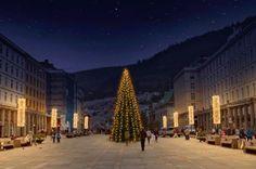 Christmas tree at Torgallmenningen, Bergen, Norway