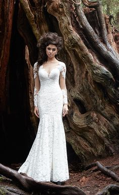 A beautiful long sleeve lace bridal gown with a fit-and-flare silhouette and illusion v-neckline.