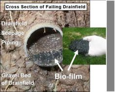Diagnosing A Septic Tank Drainfield Problem - How To Unclog A Drain Field Pipe Septic Tank Repair, Septic Tank Service, Septic Tank Problems, Cleaning With Hydrogen Peroxide, Septic Shock, Field Wallpaper, Sewer System, Outdoor Projects, Diy Projects