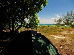 Lady Musgrave Island Camping