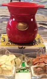 Velata - Coming May 1, 2012  FUN FONDUE Electric Warmers & Premium Chocolate