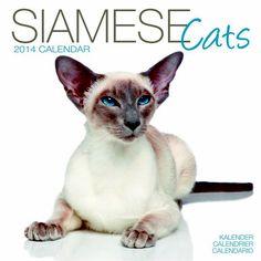 Cat Calendar, Siamese Cats, Grid, Large Format, Dates, Photographs, Contemporary, Studio, Birthday