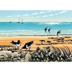 Rob Barnes, Sea Holly and Oystercatchers