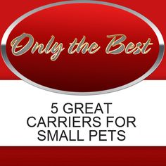 22 Best Pet Carriers For Small Pets Images Pet Carriers