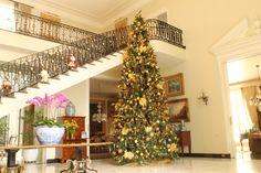 Claudia  Cinel. Montagem e Desmontagem de árvore de Natal. http://www.clausprime.com.br