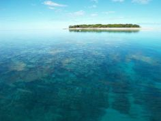 Lady Musgrave Island (Great Barrier Reef), Queensland