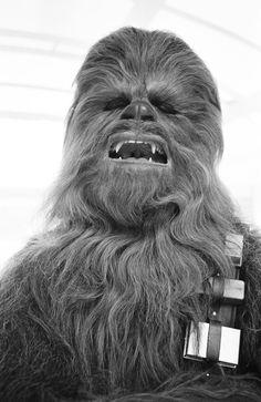 """""""RUUUrhrGUGUGHRhghghrRURUghGHrrrr…"""" - Chewbacca..."""