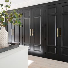 Nyla Free Designs Inc. - Lately Loving: Jet Black l Jet Black 2120-10 by Benjamin Moore is one of our favourite black paint colours and we love how our wall of doors turned out in this striking colour.