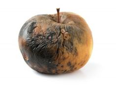 rotten apples - Google Search