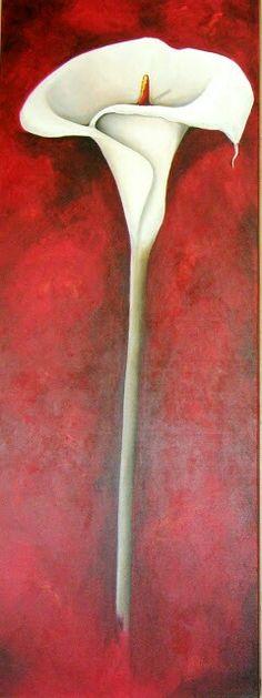 Arum lilly