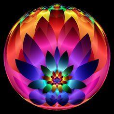 Qool milagre da luz.  Variedade de cores  Ânimo