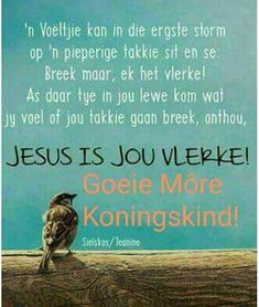 Jesus is ons vlerke…. Goeie Nag, Christ Quotes, Goeie More, Afrikaans Quotes, Good Night Quotes, Good Morning Wishes, Trust God, Positive Thoughts, Qoutes