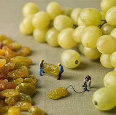 amazing art portraying the lives of tiny people