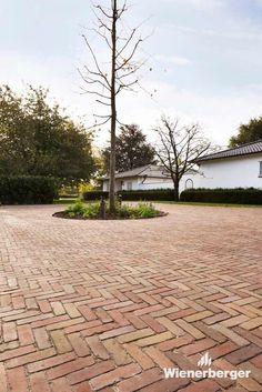The architect of this drive way of a private house in Belgium decided to use a herringbone bond, firstly because it looks beautiful and secondly because it's more robust. Everyone agreed that the ensemble creates a harmonious picture by using clay pavers.