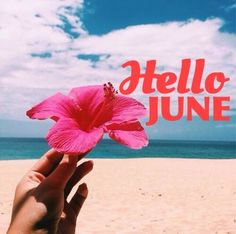 Seasons Months, Days And Months, Seasons Of The Year, Months In A Year, June Pictures, New Month Wishes, New Month Quotes, Welcome June, July Background