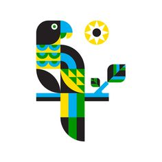 Parrot on AIGA Member Gallery