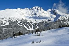12 Top Things to Do in Whistler & Easy Day Trips Vancouver Tourist Attractions, Corporate Team Building Activities, Stuff To Do, Things To Do, Best Ski Resorts, Easy Day, Most Beautiful Cities, Whistler, Travel Goals
