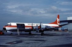 An Electra freighter of NWT Air at Vancouver Airport in August 1983 - Wikipedia, the free encyclopedia