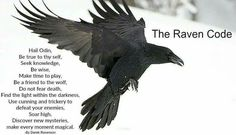 The Raven Code ¤ – Norse Mythology-Vikings-Tattoo Norse Tattoo, Raven Tattoo, Tattoo Celtic, Deer Tattoo, Tattoo Ink, Arm Tattoo, Norse Pagan, Norse Mythology, Wiccan