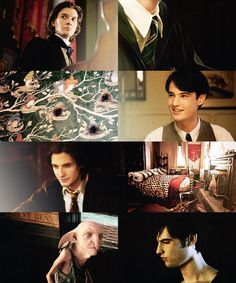 """Sirius & Regulus Black: """"…my parents, with their pure-blood mania, convinced that to be a Black made you practically royal… my idiot brother, soft enough to believe them… He was younger than me… and a much better son, as I was constantly reminded."""""""