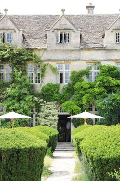 Barnsley House, Rosemary Vereys garden in the Cotswold.  Her own English country home is a poem to prettiness, with peony borders, a world-famous potager, knot gardens and a stunning laburnum.