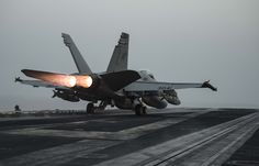 ARABIAN GULF (July 31, 2016) An F/A-18C Hornet assigned to the Wildcats of Strike Fighter Squadron (VFA) 131 launches from the flight deck of the aircraft carrier USS Dwight D. Eisenhower (CVN 69) (Ike). Ike and its Carrier Strike Group are deployed in support of Operation Inherent Resolve, maritime security operations and theater security cooperation efforts in the U.S. 5th Fleet area of operations. (U.S. Navy photo by Mass Communication Specialist 3rd Class J. Alexander Delgado/Released)