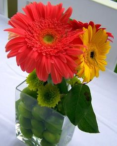 button mums in the green-gerbera daisy in ivory. Love the limes!