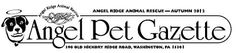 Angel Ridge Animal Rescue Local Shelters, Animal Rescue, Angels, Pets, Angel
