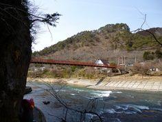 Unfezant in Yamatsuri, Fukushima 36 (Yamatsuriyama Park)