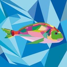 Orata. Adobe Illustrator. Tecnica Wpap. Autore Elena Migali 3Al