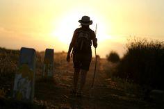 Hacer el camino de Santiago y vivir mil experiencias por el camino.