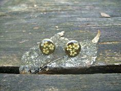 Real flower earrings  Spring elderflowers  by SnippetsOfNature