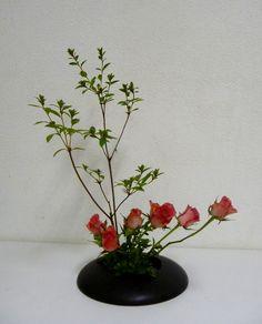 Ikabana (Tonnie Smits) (4)