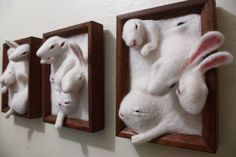 JeweledElegance: Incoming from a Parallel Universe of Mutant Bunnies