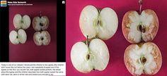 AYUDA PARA MAESTROS: Una maestra explica con dos manzanas qué es el bullying