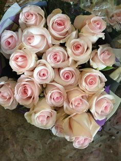 Sweet Akito...a very soft bridal pink. Sold in bunches of 20 stems from the Flowermonger the wholesale floral home delivery service.