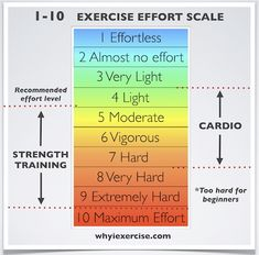 PLEASE DON'T ERASE TEXT    How to use the scale  Pay attention to how you feel during the workout.How fatigued are your muscles? How heavy is your breathing?For best use of these free exercise tips, see the effort level descriptions for strength training andcardiovascular exercisebelow.  Strength Training  Give your effort a 1-10 rating for each exercise in your workout. When you finish an exercise, let your breathing return to normal before starting the next exercise.