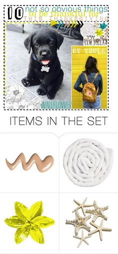 """""""♡ 10 NOT SO OBVIOUS THINGS TO BE THANKFUL FOR"""" by creations-by-tesla ❤ liked on Polyvore featuring art and tipsbytesla"""