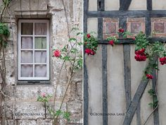 Picardy, France, countryside, nostalgic roses, medieval houses